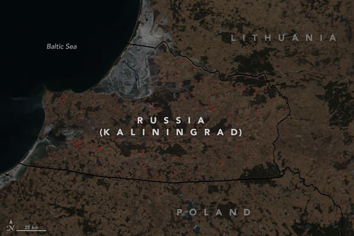 Фото дня NASA: Как в Калининграде жгут траву