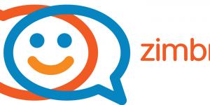 Как удалить DNSCACHE из сервисов Zimbra